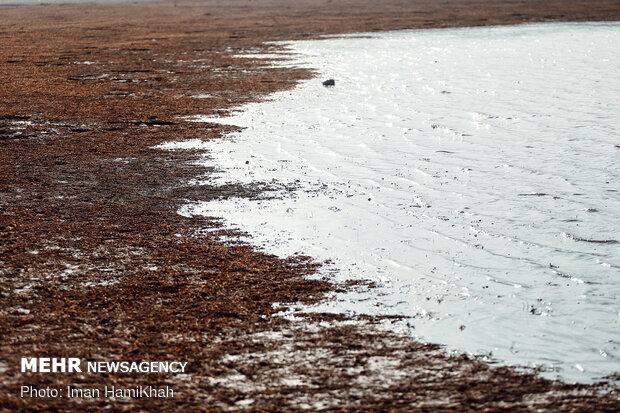 طبیعت زیبای سد آبشینه