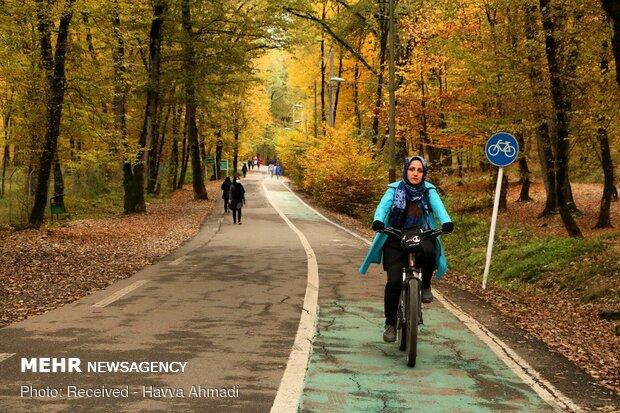 لمس پاییز در پارک جنگلی Beautiful sceneries of late autumn in Alangdareh Forest Park