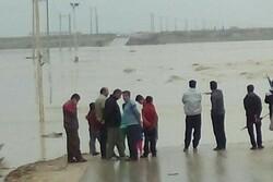 توزیع بستههای بهداشتی و معیشتی و اقلام ضروری در بوشهرو خوزستان