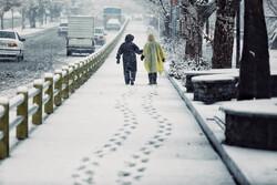 Autumn snow falls in Hamedan
