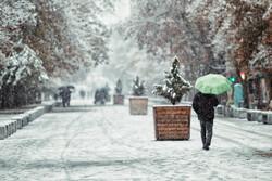 ہمدان میں شدید برف باری