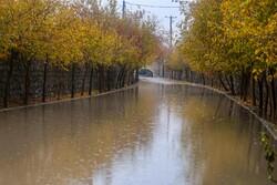 اصفهان امشب بارانی میشود / وزش تندباد در اکثر مناطق استان