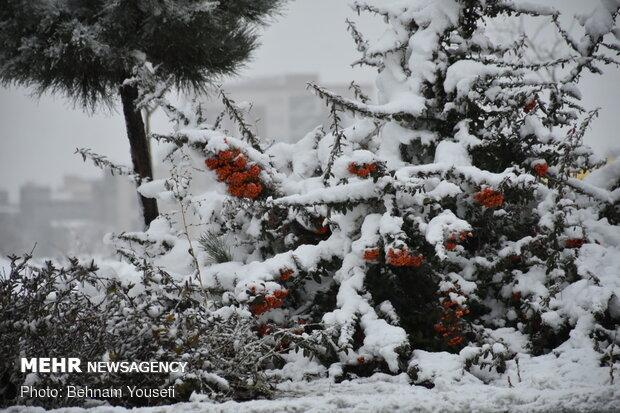 برف پاییزی اراک