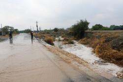 تلفات دامها در سیل گرمسار/ خسارات هنوز برآورد نشده است