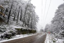 بارش برف در ۱۲ استان/افزایش غلظت آلایندههای جوی