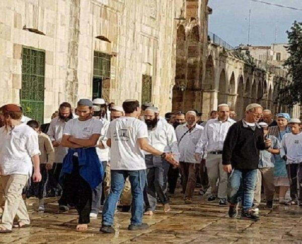 """جماعة الهيكل تُخطط لـ""""شتاء يهودي"""" لاقتحام المسجد الأقصى"""