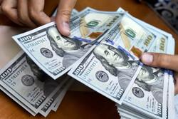 قیمت دلار  ۵ اسفند ۱۳۹۹ به ۲۴ هزار و ۴۴۵ تومان رسید/ هر یورو ۲۹ هزار و ۴۴۰ تومان