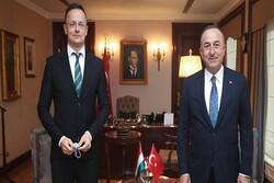 چاووشاوغلو: اتحادیه اروپا باید میانجی صادقی باشد