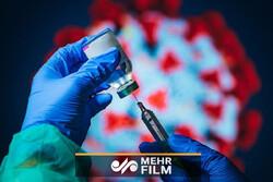 تزریق واکسن کرونا از دی یا بهمنماه