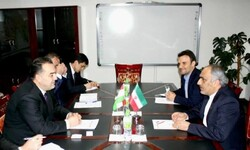 Iran, Tajikistan discuss implementation of joint decisions