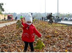 فضای نشاط برای شهروندان منطقه ۹ با «نت پاییزی»