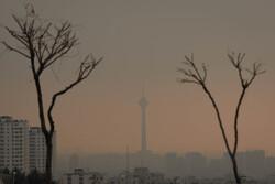 افزایش ۱۸.۵ درصدی تماس بیماران قلبی و تنفسی با اورژانس به دلیل آلودگی هوا