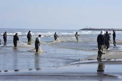 صید ماهیان استخوانی دریای خزر