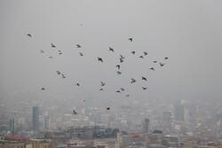 تبریز میں فضائی آلودگی