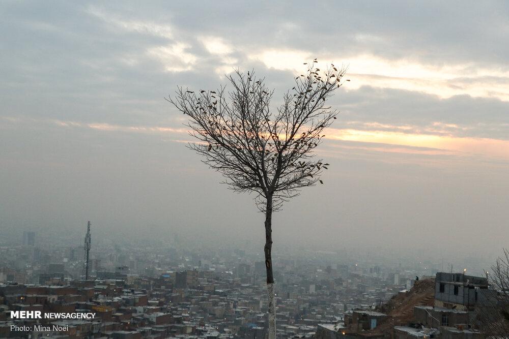 شاخص آلودگی هوای تهران در وضعیت قرمز/ هشدار به شهروندان