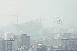 بررسی کاهش ردپای کربن در ساختمان سازی تهران