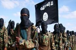 پاکستان کے وہابی اداروں کی طرف سے داعش کو مدد مل رہی ہے