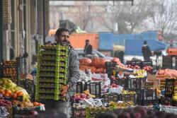 فعالیت ۱۰ گروه نظارتی بر بازار شب یلدا در کردستان