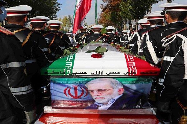 Newzland expresses concern on Iranian top scientist assault