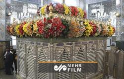 Hz. Zeynep'in (s.a) Türbesi çiçeklerle süslendi