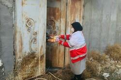 هلال احمر خراسان شمالی۵۰۰ بسته مواد غذایی بین نیازمندان توزیع کرد