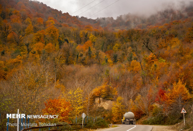 İran'ın kuzeyinde sonbahar manzarası