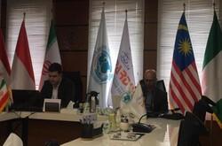 توانمندی ها و نیازهای کشورهای عضو D۸ در بخش فناوری ارائه می شود