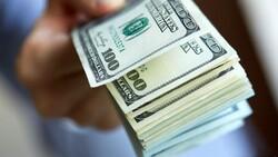 رانت حاصل از ارز ۴۲۰۰ تومانی دکانی برای مفسدان اقتصادی است