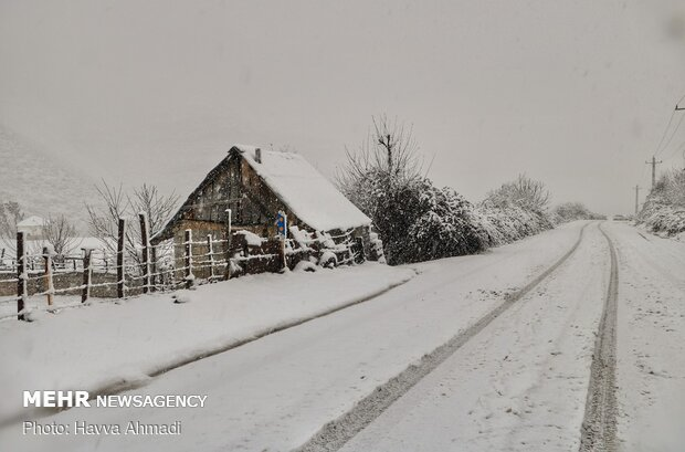 VIDEO: Late December snow in Mazandaran