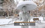 ۲۸ استان کشور دیشب یخ زد