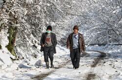 Nature in winter, N Iran