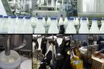 فرآوری محصولات دامی ظرفیتی مغفول در بام ایران/ سرمایهگذاران حمایت میشوند