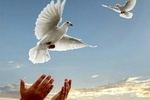 لبخند حاج قاسم؛ شریک شادی زندانیان رهاشده از بند