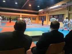 سلطانی فر: پورشیب در ورزش ایران الگوست/ در کنار کاراته هستیم