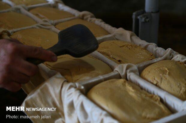 İran'da şeker üretimi