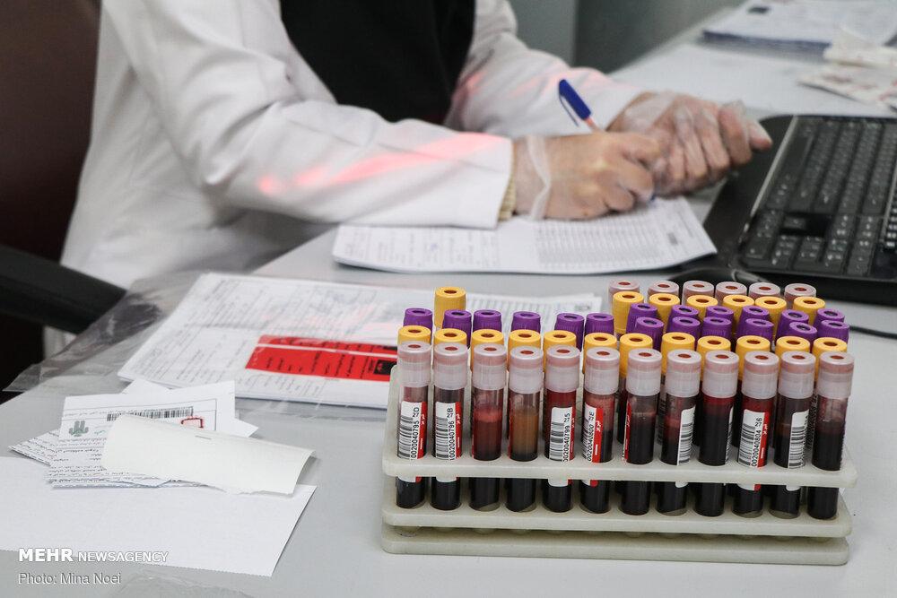 کمیاب ترین گروه خونی در ایران/سهم بانوان از اهدای خون