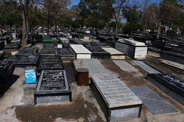 هیچ درختی برای دفن اموات در کرمان قطع نشده است