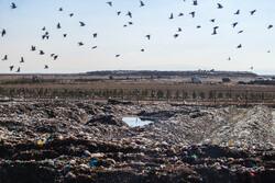 وضعیت قرمز در سایت زباله محمد آباد