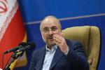 تقدیر قالیباف از ایرانیان خارج از کشور برای شرکت در انتخابات