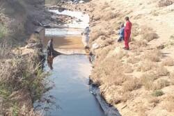 عملیات جمعآوری لکههای نفتی در گناوه ادامه دارد/ منشأ آلودگی مشخص شد