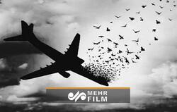 بدون تعارف درباره جزئیات حادثه تلخ هواپیمای اوکراینی