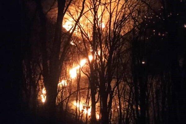 آتشسوزی ارتفاعات منطقه مال آقای باغملک