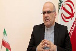Tehran military court pursuing Ukrainian plane case: Envoy