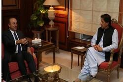 وزیر امور خارجه ترکیه با نخستوزیر پاکستان دیدار کرد