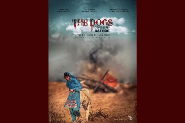 'The Dogs Didn't Sleep Last Night' to vie at Goa FilmFest.