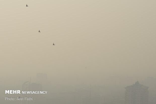 هوای  نظرآباد و ساوجبلاغ در وضعیت ناسالم برای گروههای حساس