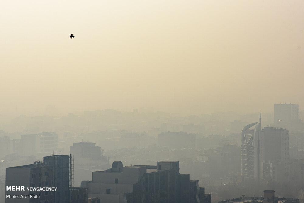 برای رفع آلودگی هوا از محققان کمک نمیگیرند/ پروژههای آلودگی هوا دست افراد آگاه نیست