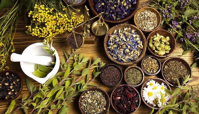 ۲۰ طرح برای هوشمندسازی ابزار تولید گیاهان دارویی اجرایی شد
