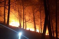 آتش در پارک ملی گلستان/نیروهای امدادی اعزام شدند