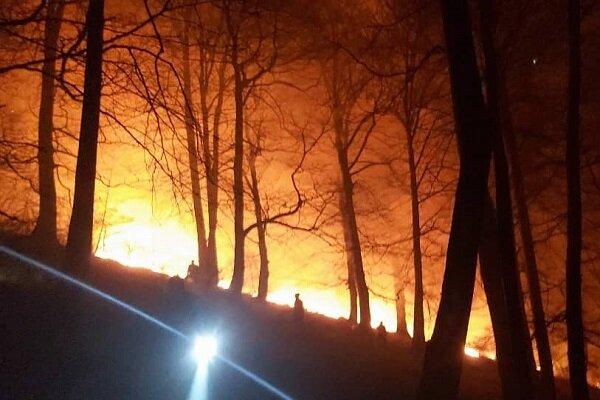 آتش سوزی جنگل های گلستان مهار شده است/ آتش فعال نداریم